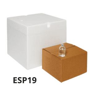 esp19-1